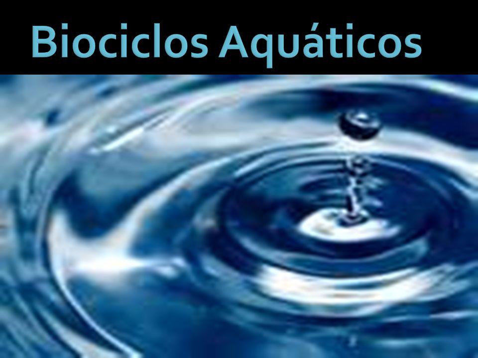 Biociclos Aquáticos