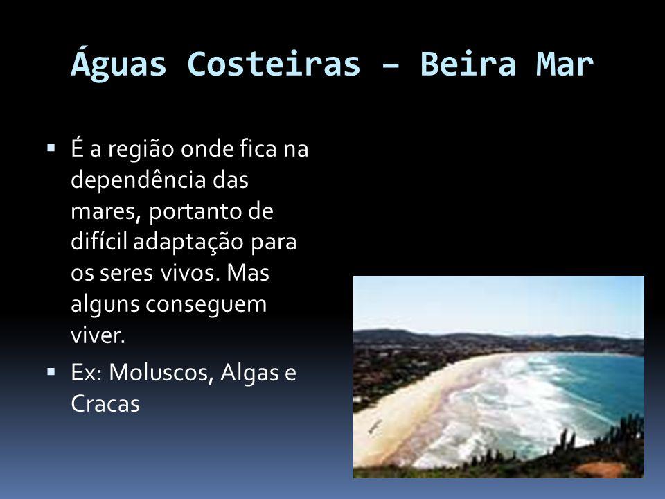 Águas Costeiras – Beira Mar