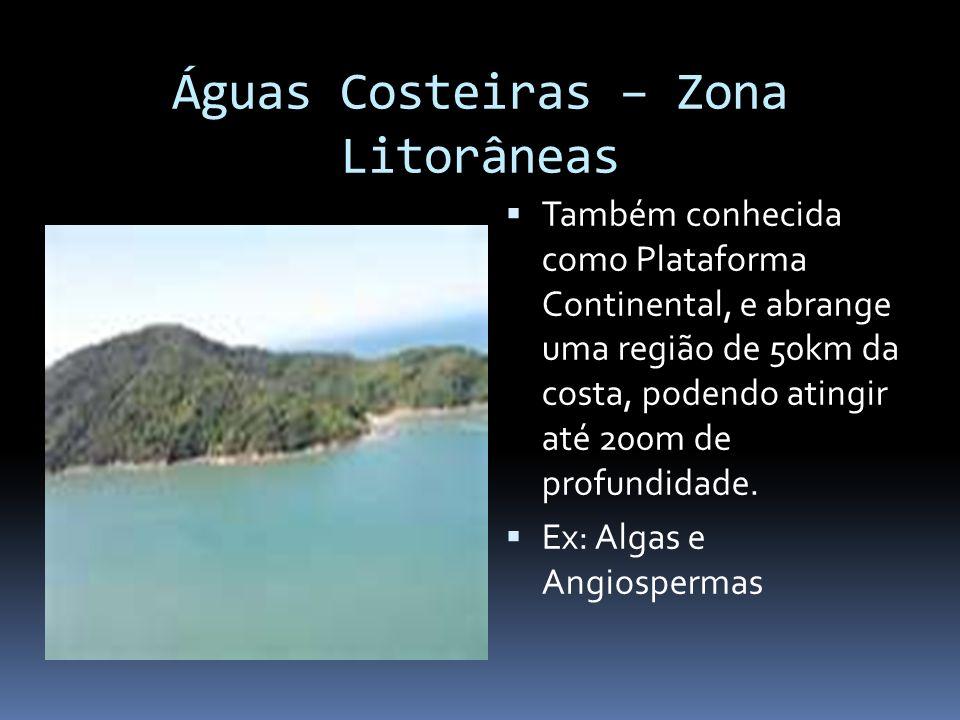 Águas Costeiras – Zona Litorâneas