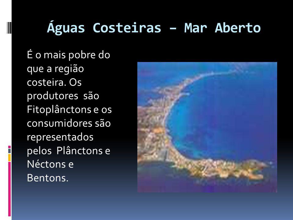 Águas Costeiras – Mar Aberto