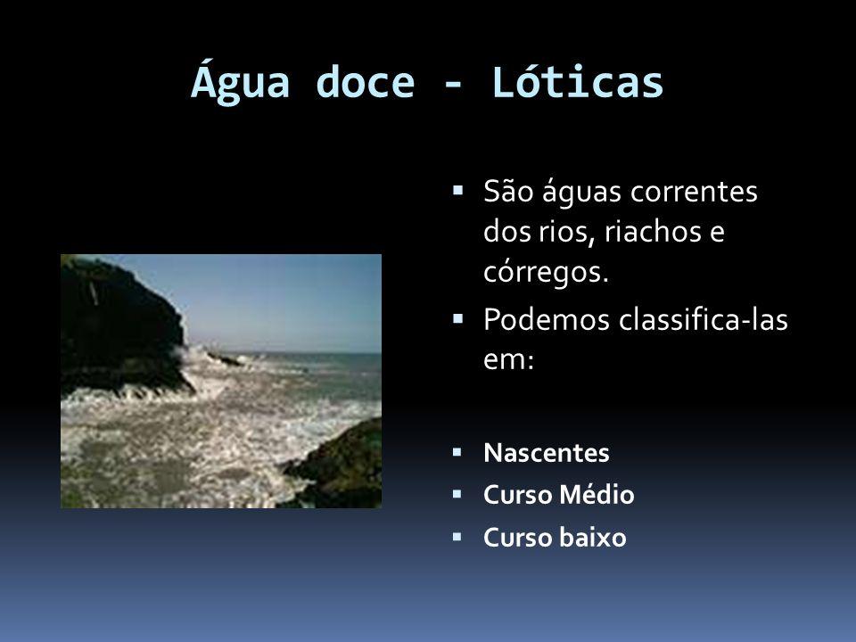 Água doce - Lóticas São águas correntes dos rios, riachos e córregos.