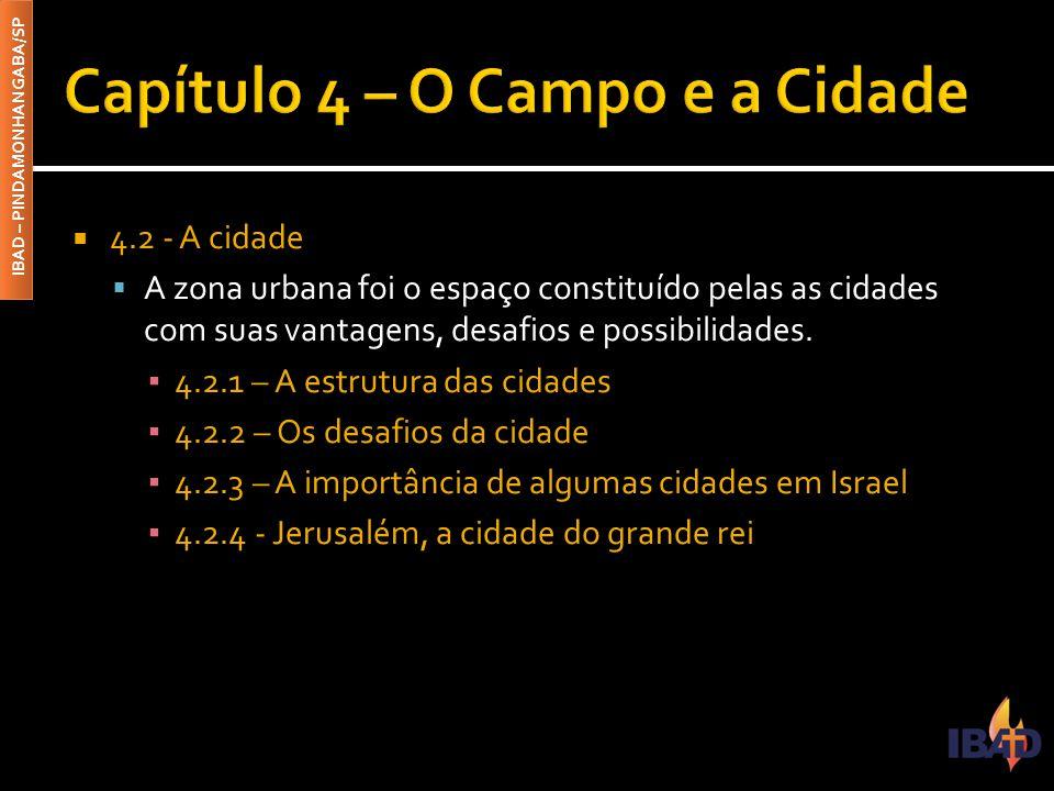 Capítulo 4 – O Campo e a Cidade