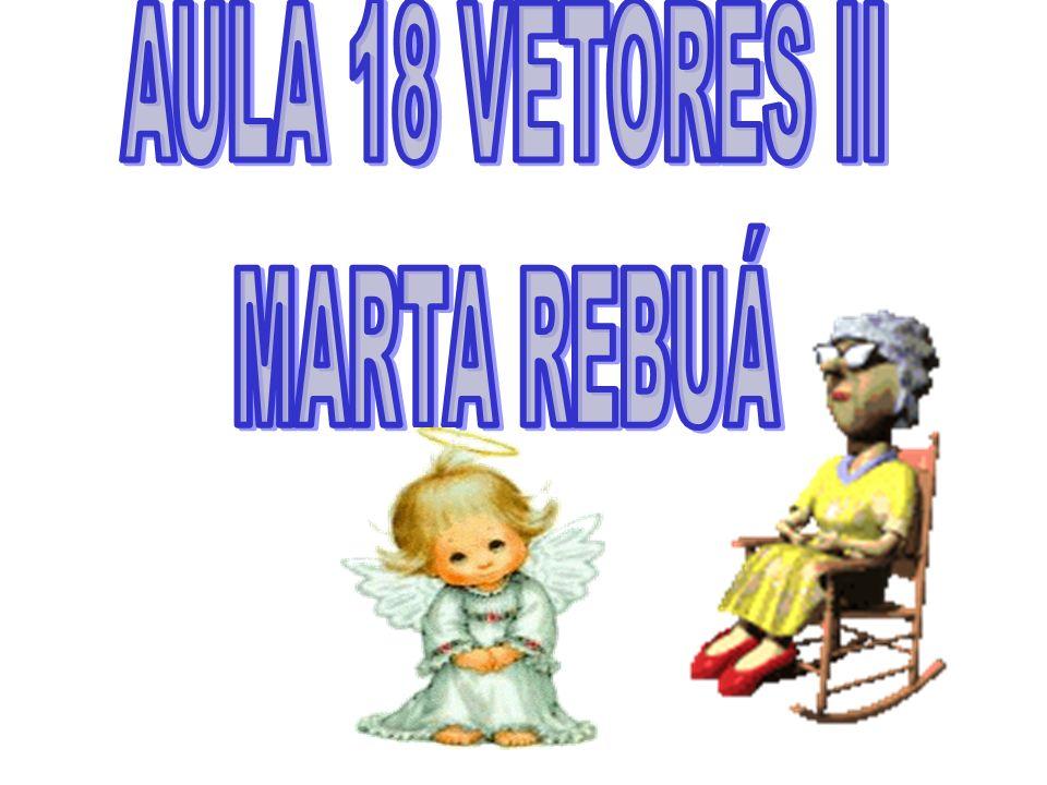 AULA 18 VETORES II MARTA REBUÁ