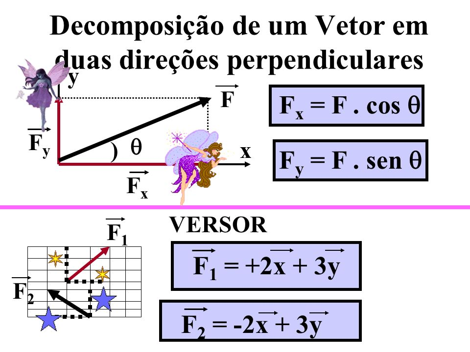 Decomposição de um Vetor em duas direções perpendiculares