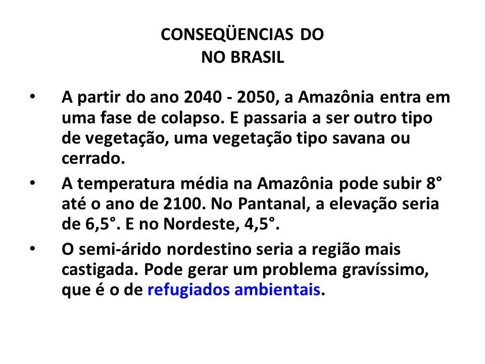 CONSEQÜENCIAS DO NO BRASIL