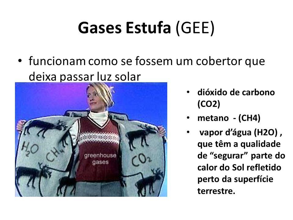 Gases Estufa (GEE) funcionam como se fossem um cobertor que deixa passar luz solar. dióxido de carbono (CO2)