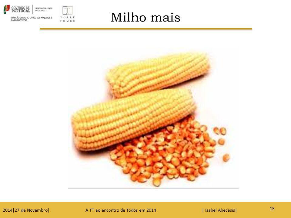 Milho maís