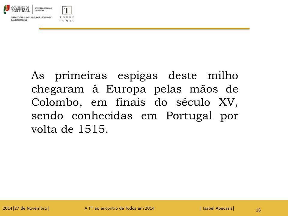 As primeiras espigas deste milho chegaram à Europa pelas mãos de Colombo, em finais do século XV, sendo conhecidas em Portugal por volta de 1515.