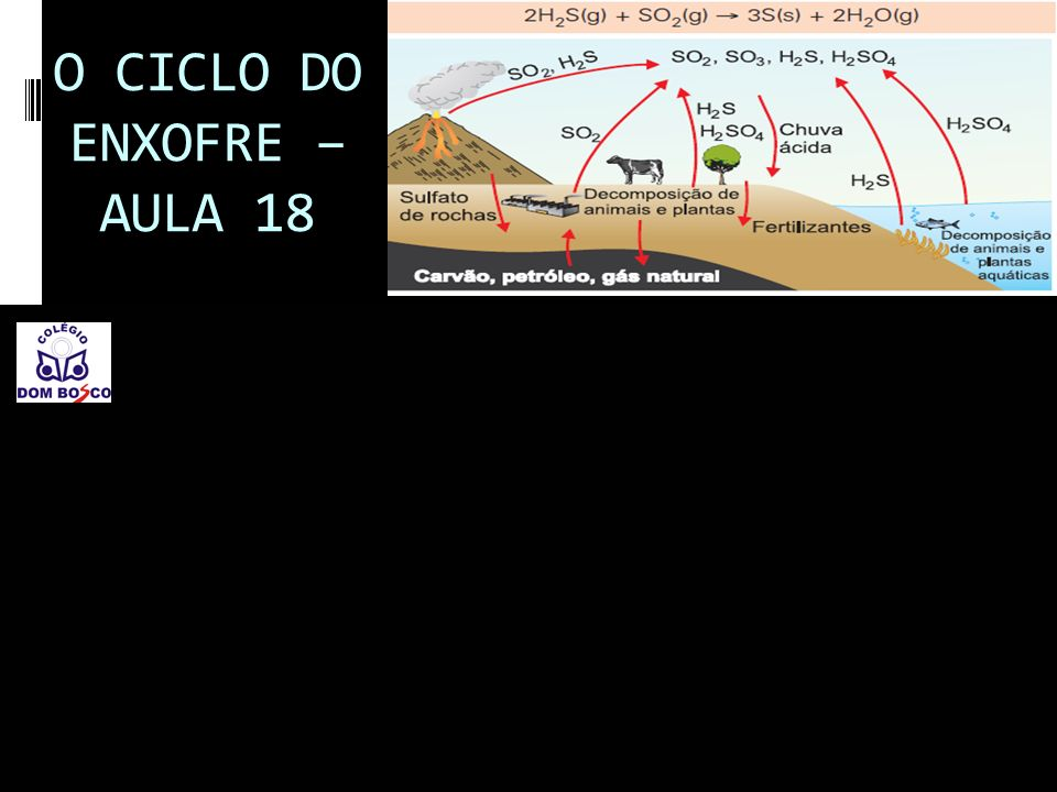 O CICLO DO ENXOFRE – AULA 18