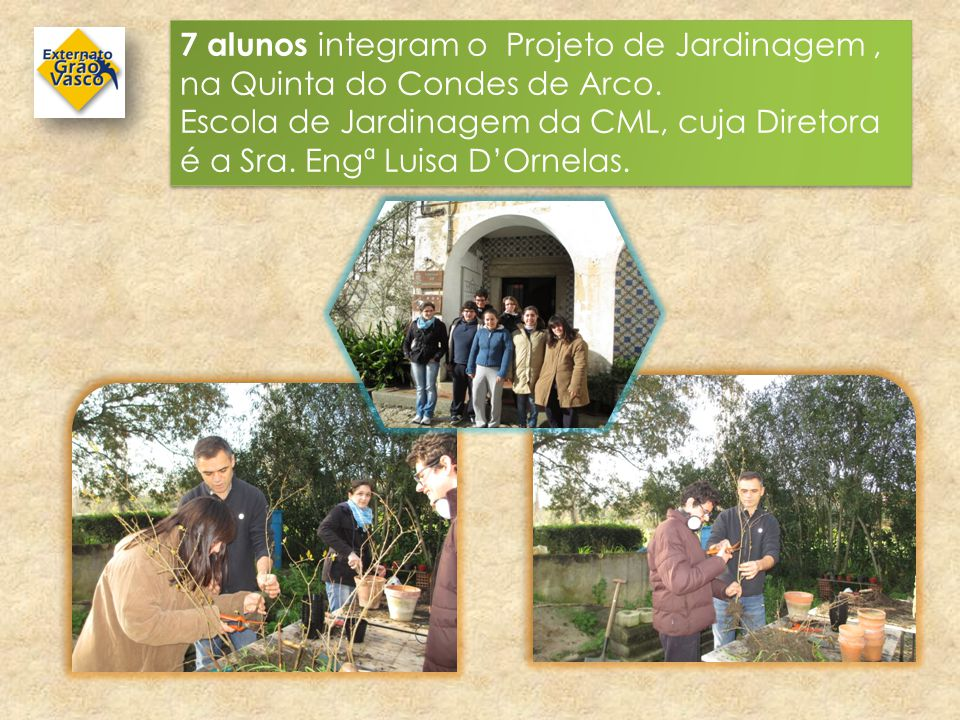 7 alunos integram o Projeto de Jardinagem , na Quinta do Condes de Arco.