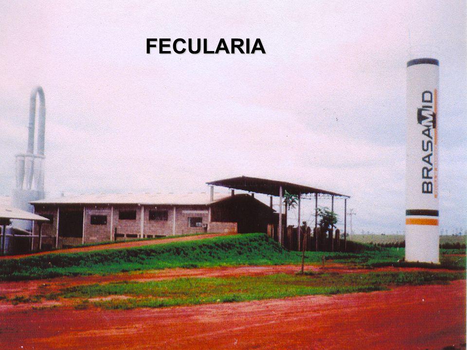 FECULARIA