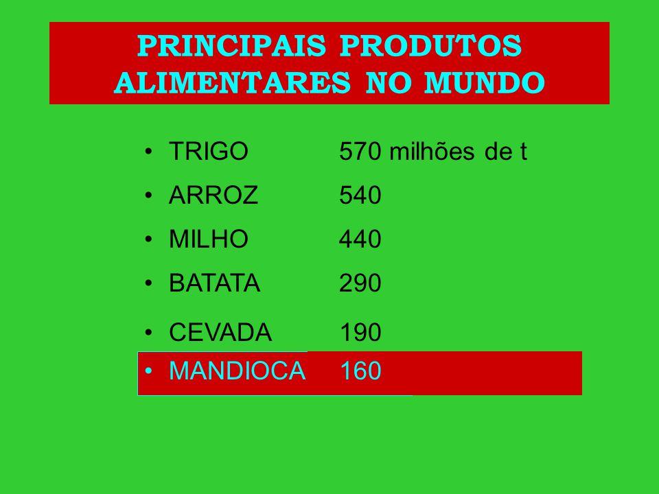 PRINCIPAIS PRODUTOS ALIMENTARES NO MUNDO
