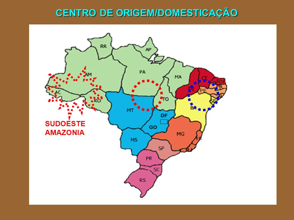 CENTRO DE ORIGEM/DOMESTICAÇÃO