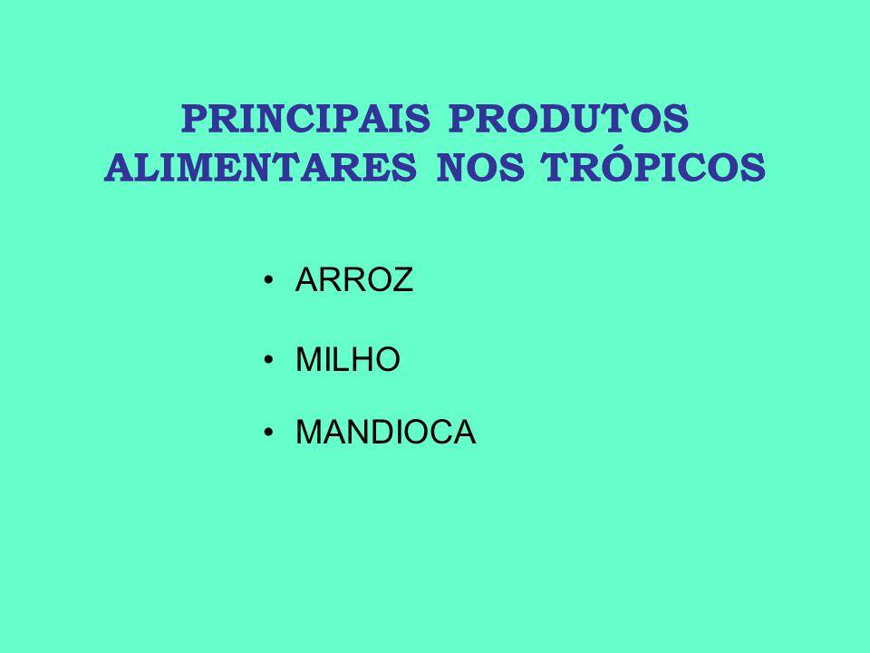 PRINCIPAIS PRODUTOS ALIMENTARES NOS TRÓPICOS