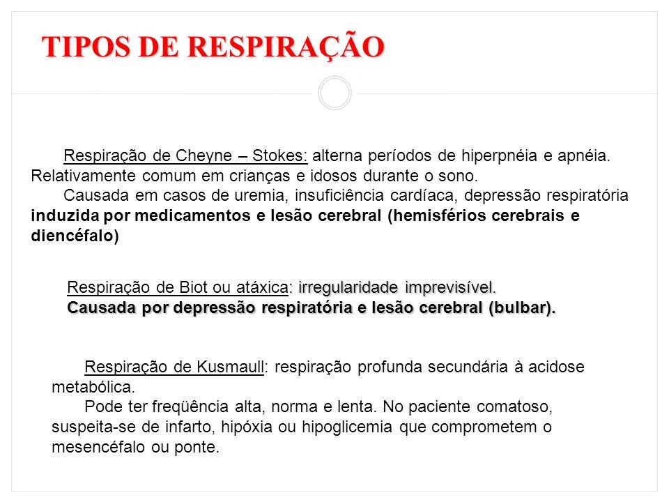 TIPOS DE RESPIRAÇÃO Respiração de Cheyne – Stokes: alterna períodos de hiperpnéia e apnéia. Relativamente comum em crianças e idosos durante o sono.
