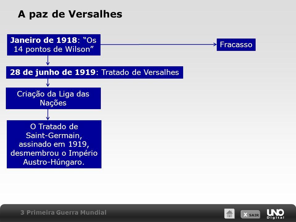 A paz de Versalhes Janeiro de 1918: Os 14 pontos de Wilson Fracasso