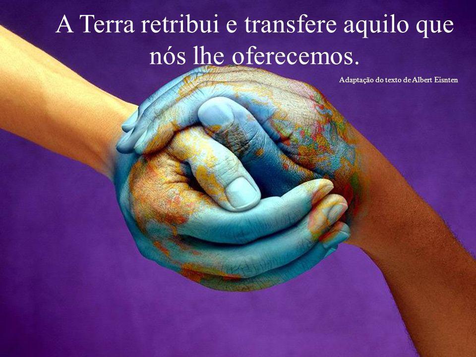 A Terra retribui e transfere aquilo que nós lhe oferecemos.