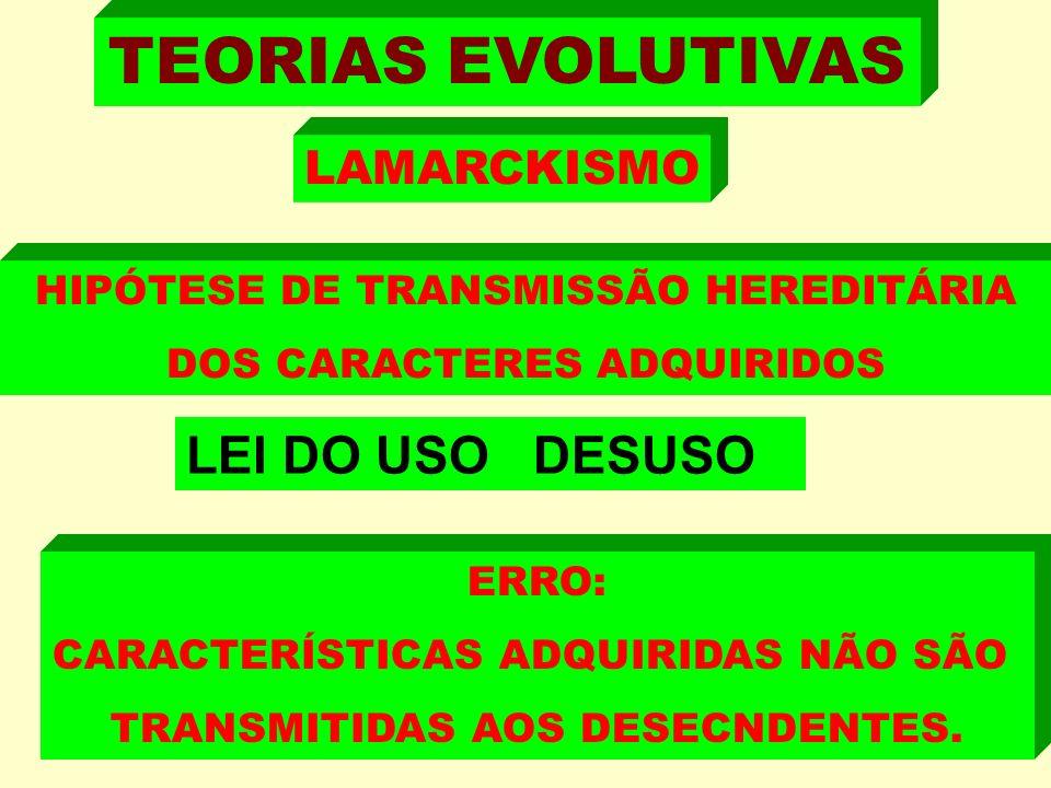 TEORIAS EVOLUTIVAS LEI DO USO DESUSO LAMARCKISMO