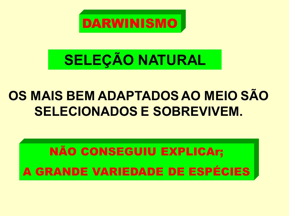 SELEÇÃO NATURAL DARWINISMO