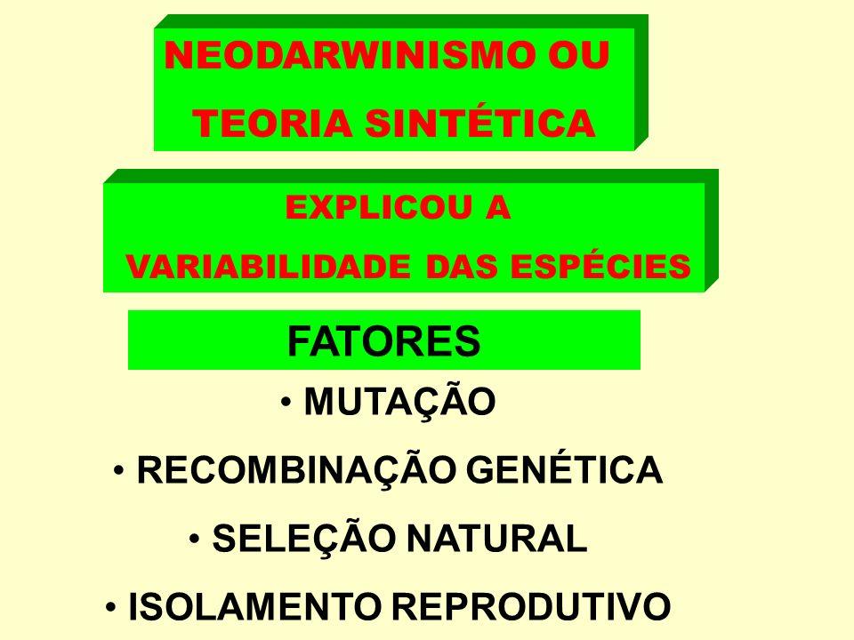 FATORES NEODARWINISMO OU TEORIA SINTÉTICA MUTAÇÃO