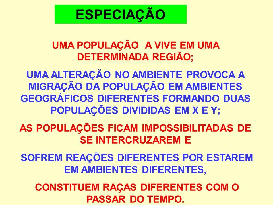 ESPECIAÇÃO UMA POPULAÇÃO A VIVE EM UMA DETERMINADA REGIÃO;