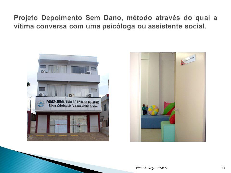 Projeto Depoimento Sem Dano, método através do qual a vítima conversa com uma psicóloga ou assistente social.