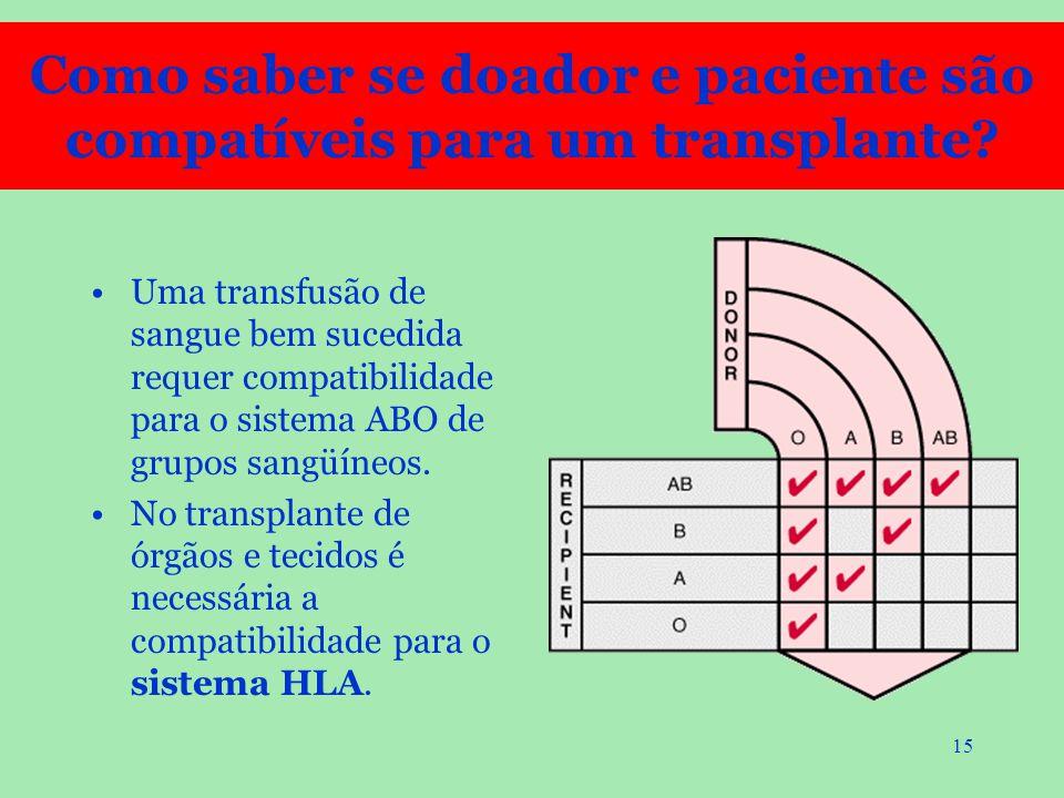 Como saber se doador e paciente são compatíveis para um transplante