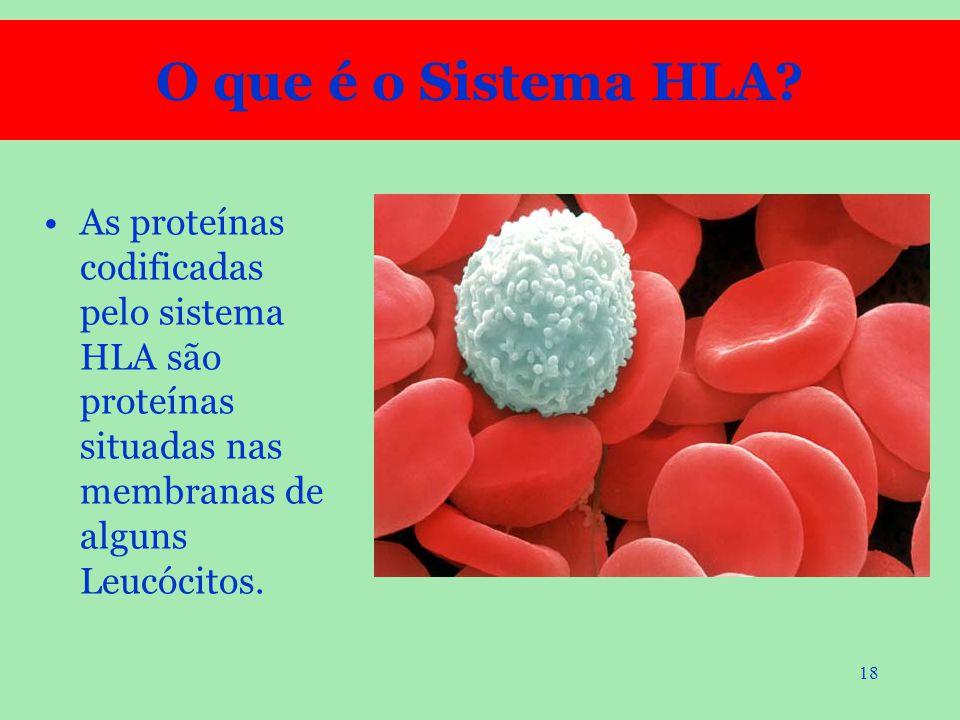 O que é o Sistema HLA.