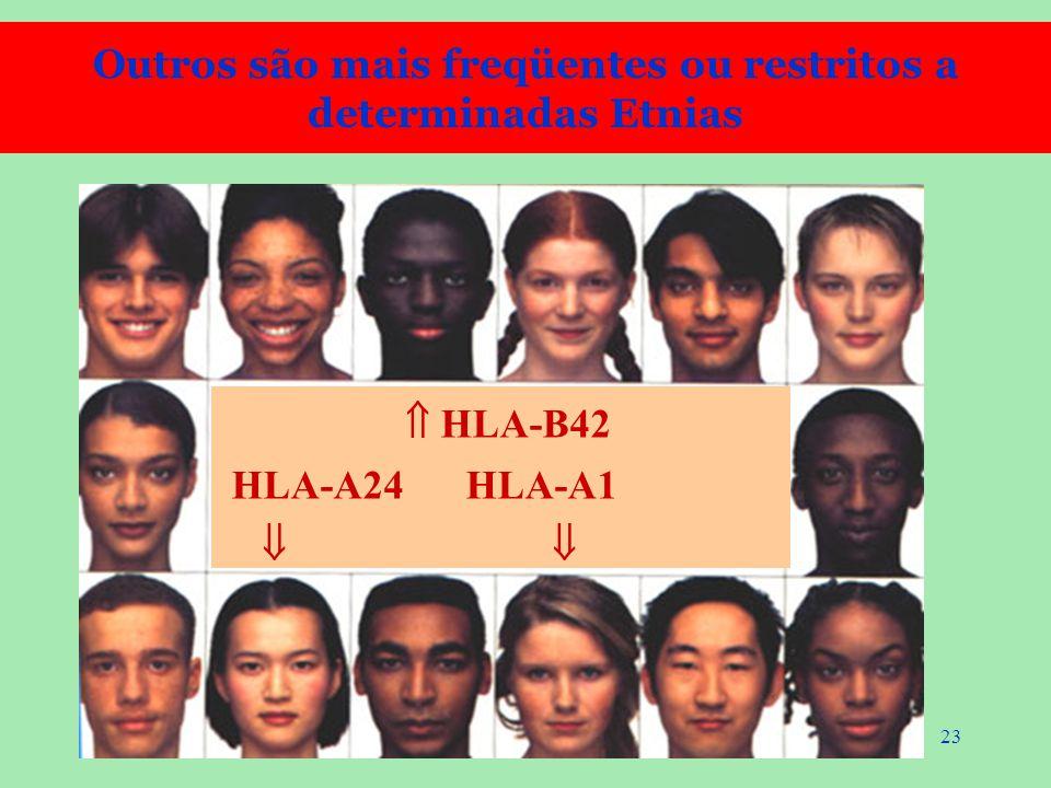 Outros são mais freqüentes ou restritos a determinadas Etnias