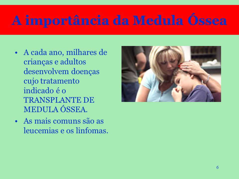 A importância da Medula Óssea