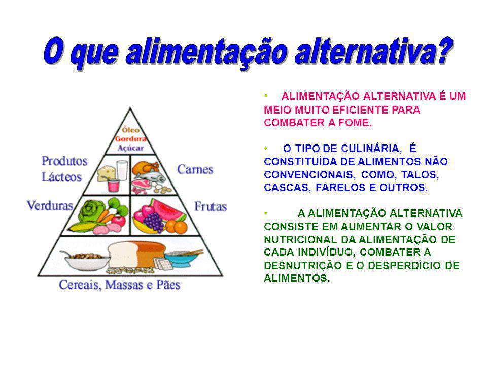 O que alimentação alternativa