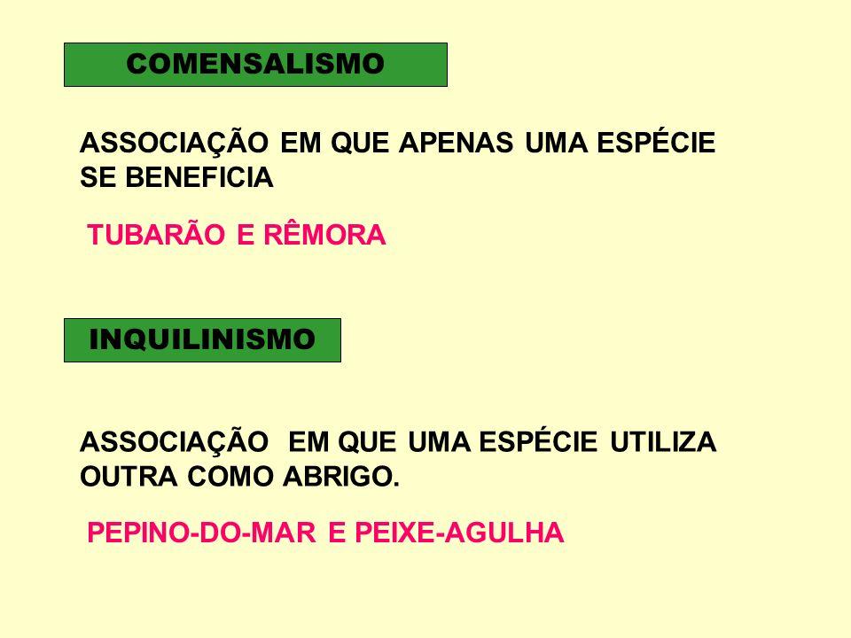 COMENSALISMO ASSOCIAÇÃO EM QUE APENAS UMA ESPÉCIE SE BENEFICIA. TUBARÃO E RÊMORA. INQUILINISMO.