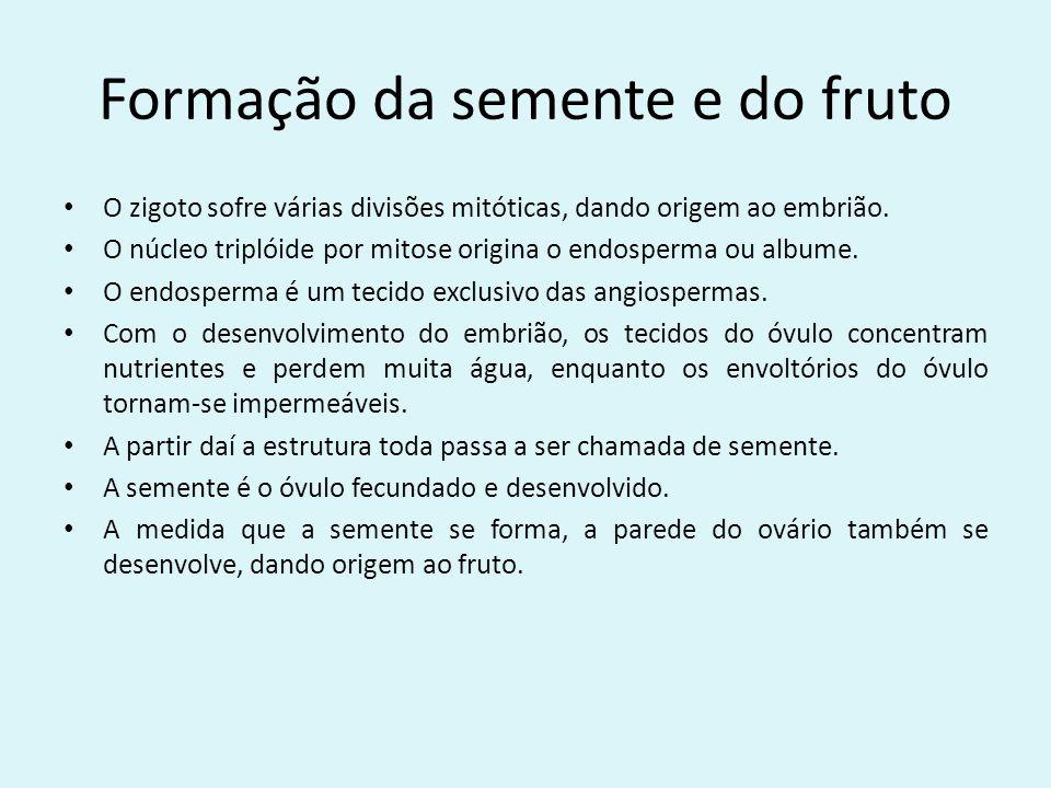 Formação da semente e do fruto