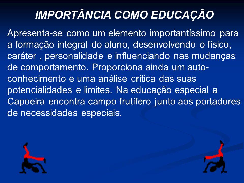 IMPORTÂNCIA COMO EDUCAÇÃO