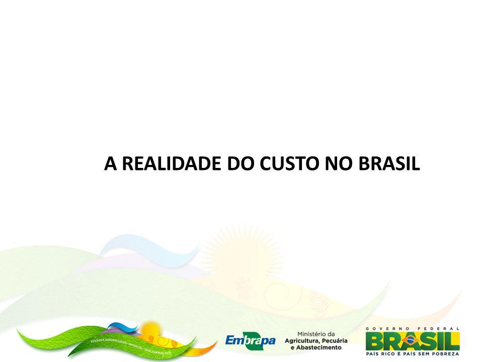 A REALIDADE DO CUSTO NO BRASIL