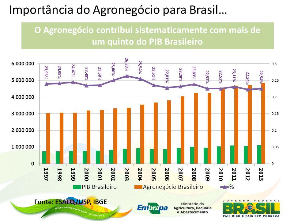 Importância do Agronegócio para Brasil…