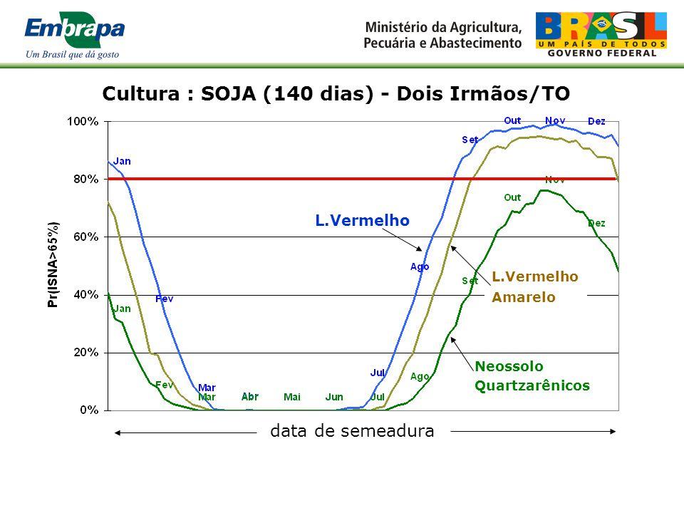 Cultura : SOJA (140 dias) - Dois Irmãos/TO