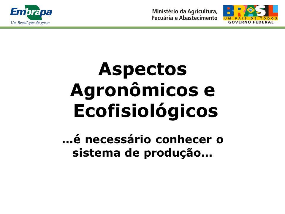 Aspectos Agronômicos e Ecofisiológicos