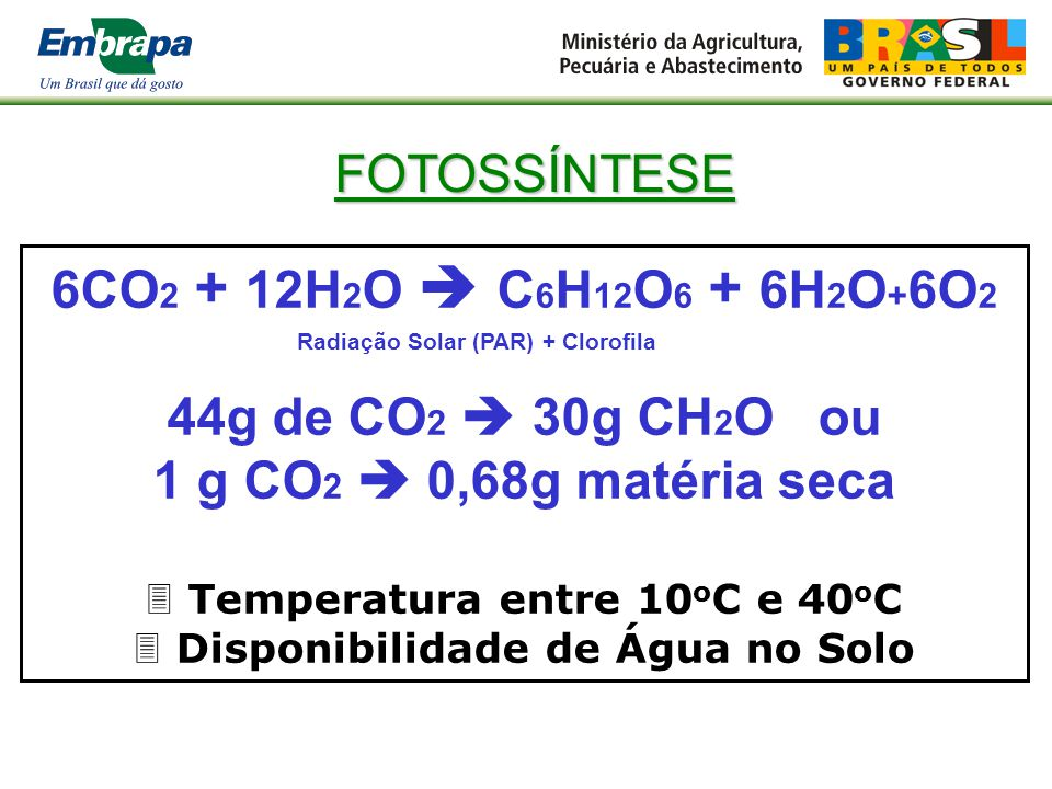 Temperatura entre 10oC e 40oC Disponibilidade de Água no Solo