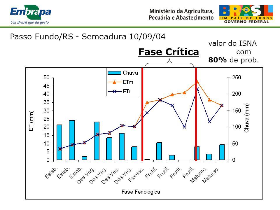 Fase Crítica Passo Fundo/RS - Semeadura 10/09/04