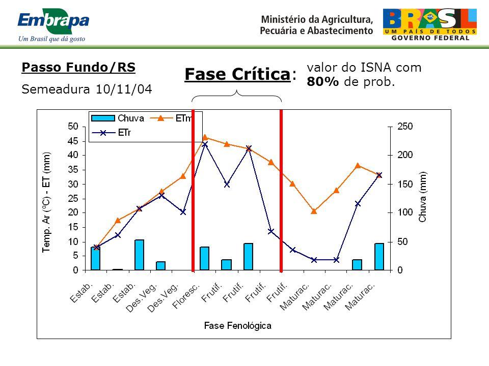 Fase Crítica: Passo Fundo/RS Semeadura 10/11/04