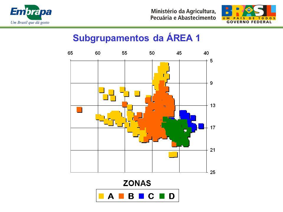 Subgrupamentos da ÁREA 1