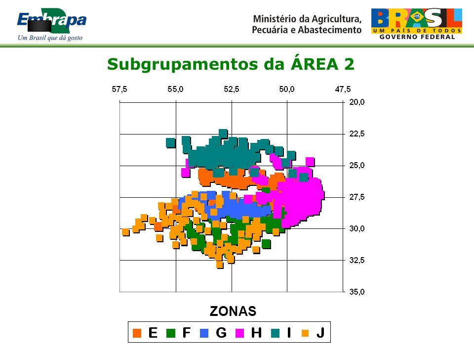 Subgrupamentos da ÁREA 2