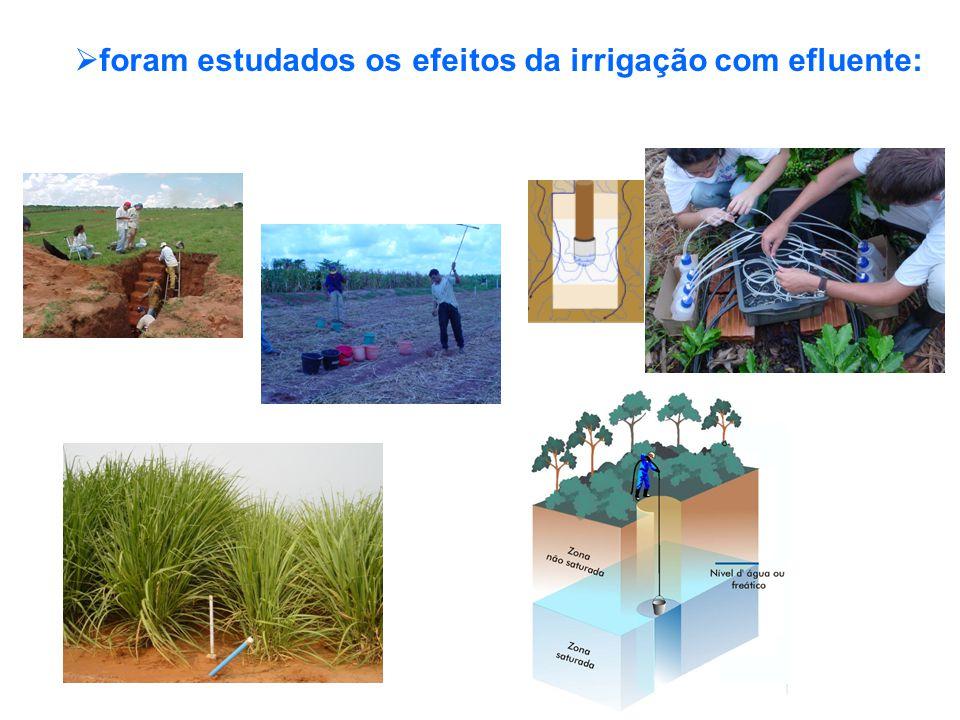 foram estudados os efeitos da irrigação com efluente: