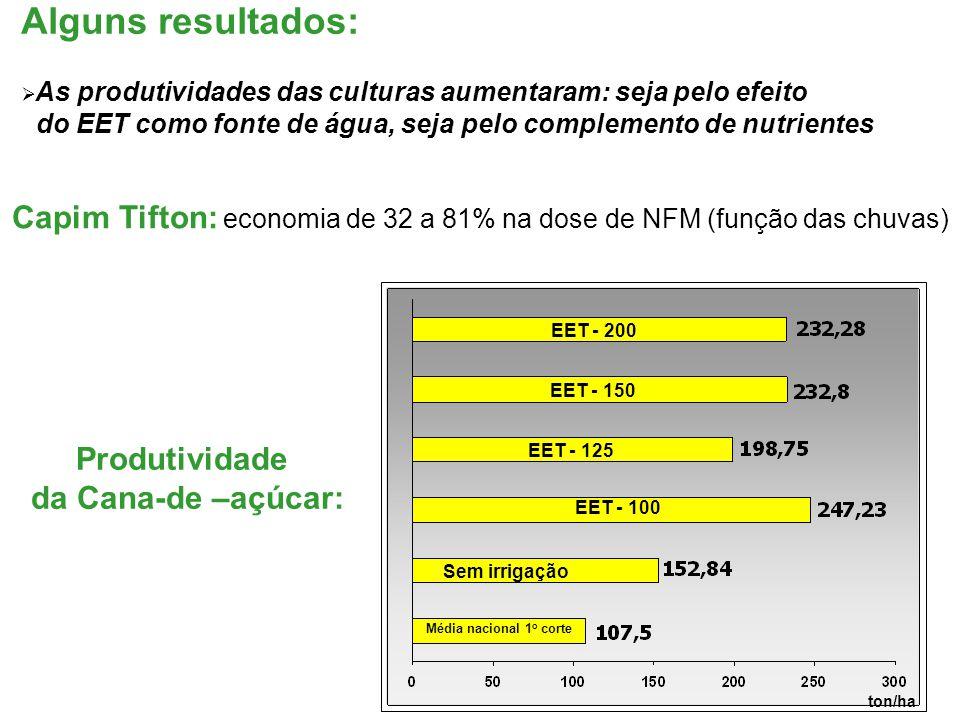 Capim Tifton: economia de 32 a 81% na dose de NFM (função das chuvas)
