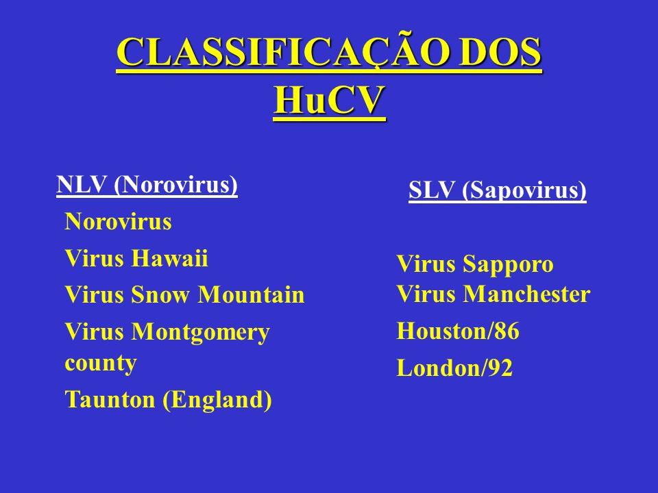 CLASSIFICAÇÃO DOS HuCV