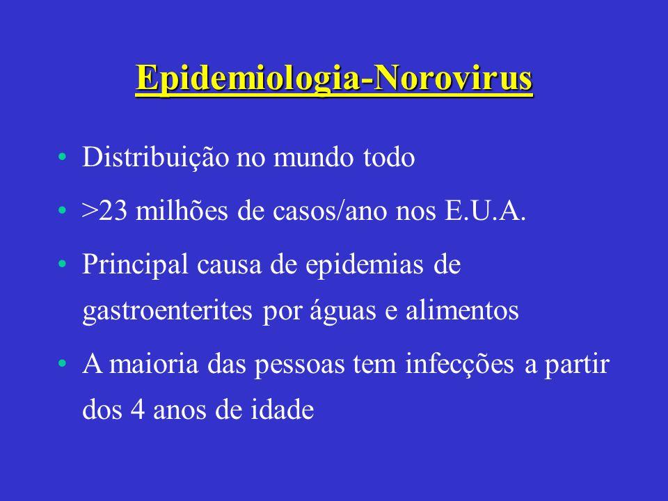 Epidemiologia-Norovirus