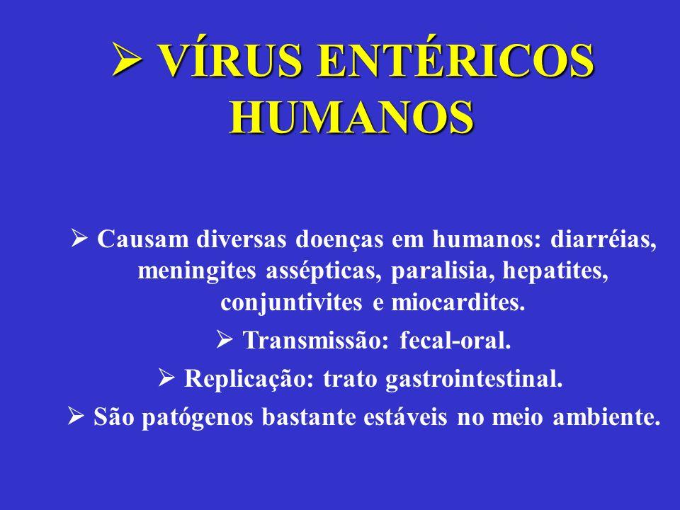  VÍRUS ENTÉRICOS HUMANOS