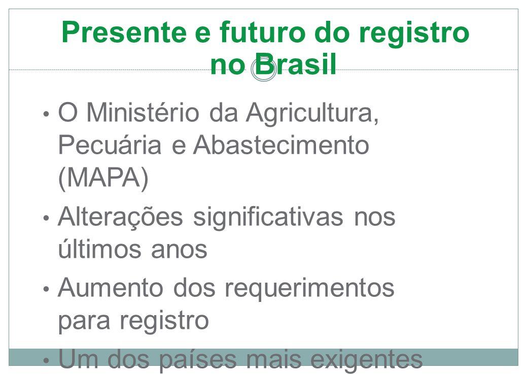 Presente e futuro do registro no Brasil