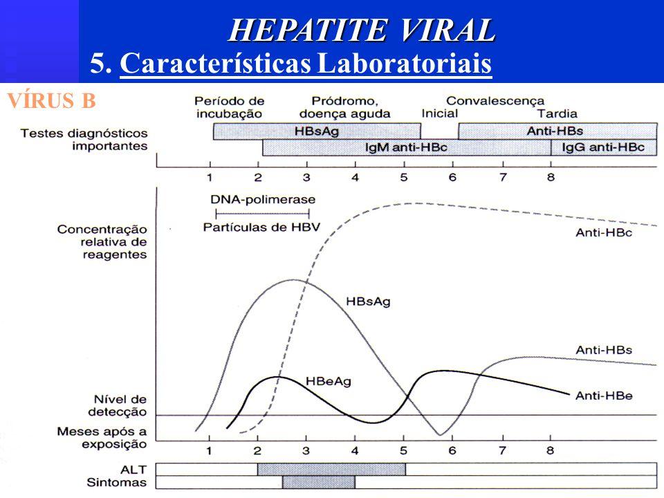 HEPATITE VIRAL 5. Características Laboratoriais VÍRUS B